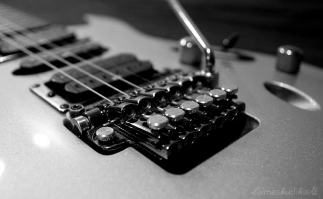 Ar ilgai gitarą įsimylėjęs paauglys gros priklausys nuo to, kodėl jis gros
